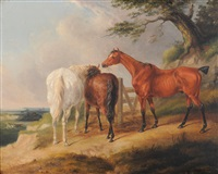 horses eating hay beside a tree with two further horses galloping beyond by william barraud
