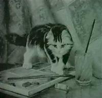 die katze auf der farbpalette by g. metsu