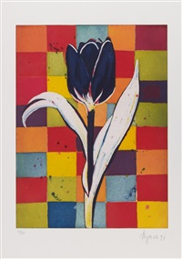 tulpe by elvira bach