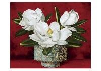 magnolia by misao kono