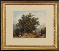 paysage de campagne animé by alexandre calame