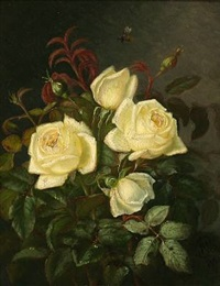 white roses by alfrida baadsgaard