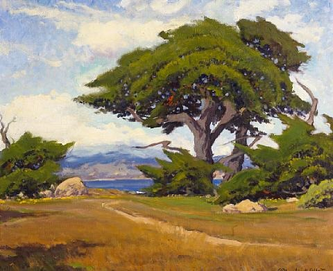 point lobos by arthur hill gilbert