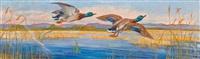 auffliegende wildenten an einem see by albert janesch