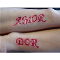 rewriting love & pain - amor & dor by roberta lima