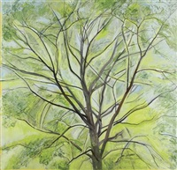 the linden tree by sylvia plimack mangold