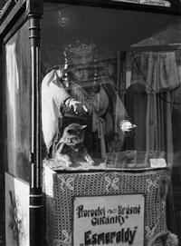 maringotky (zirkuswagen) by tibor honty