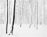 schnee by roger fritz
