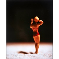 from the american beauties series by david levinthal