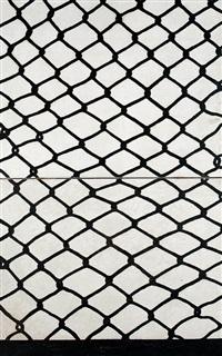 net. fence by gu xiong