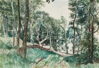 leys wood, forfarshire by james mcintosh patrick