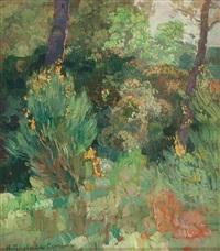 bosque, probablemente del pinaret by hermenegildo anglada camarasa