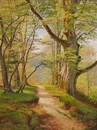 en sti i en nyudsprungen forårsskov by august jacobsen