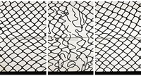 网·围墙 (net-fence) by gu xiong