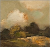shaded landscape by helen tabor