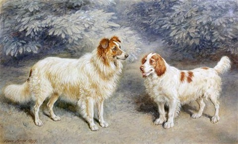 collie and a spaniel by frank paton