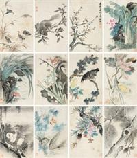 花鸟册 册页 纸本 by wang guxiang