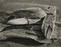 navarro river, california by minor white