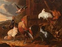 aves de corral by melchior de hondecoeter