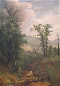 forest interior with mountains beyond by asher brown durand