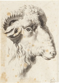 a head of a ram by jean-jacques de boissieu