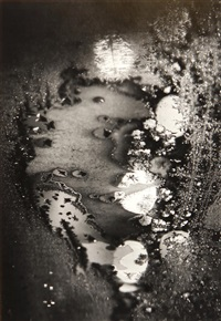 frosted window, rochester, new york by minor white