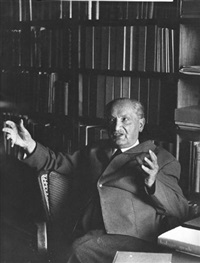 the philosopher martin heidegger by digne meller-marcovicz