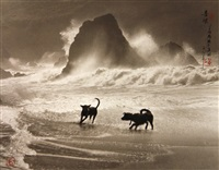 playing in the waves by don hong-oai