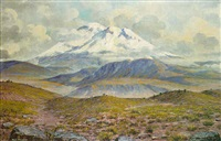 open plains with a snowcapped mountain beyond by emilio moncayo