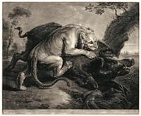 die löwin und das wildschwein (after frans snyders) by richard earlom