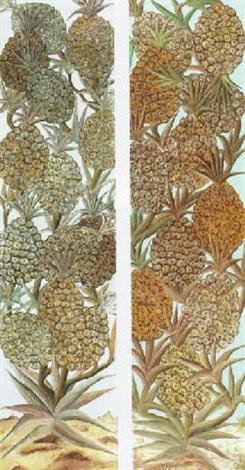 pineapples by jasmin joseph