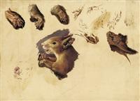 eichhörnchen (study) by paul friedrich meyerheim