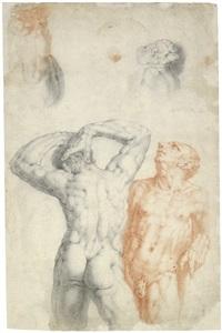 zwei männliche akte in vorder- und rückenansicht: zwei figuren aus das glück verteilt seine gaben (recto/verso) by cornelis cornelisz van haarlem