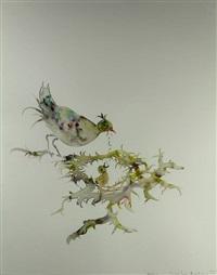 in mei leggen alle vogels een ei by marc mulders