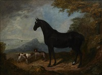 a horse and dogs in a landscape by john nost sartorius