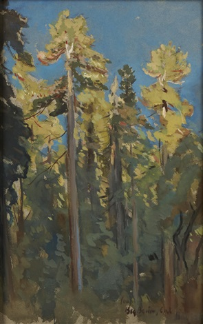 the last rays big basin cal by colin campbell cooper