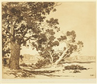 piñon trees, new mexico; mesa encantada, new mexico (no. 1)(2 works) by george elbert burr