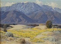 wildflowers on the valley floor with mountains beyond by carl sammons