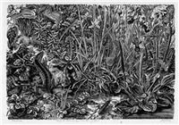 pflanzenstudie mit echse und käfer by dirk van gelder
