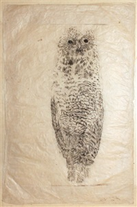 untitled (owl) by kiki smith