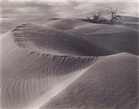 dunes by edward weston