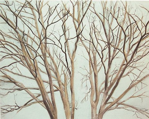 winter pin oak by sylvia plimack mangold