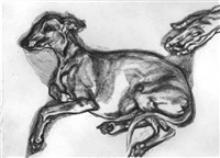 pluto aged 12 by lucian freud