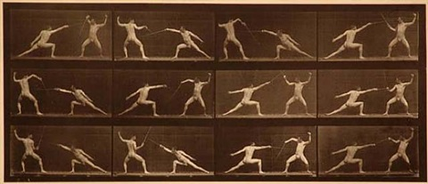 "plate 349 from ""animal locomotion"", <i>c. 1887</i> by eadweard muybridge"