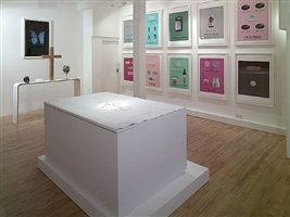 installation shot 1 by damien hirst