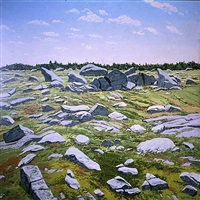 midday barren by neil welliver
