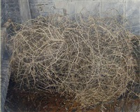 tumbleweed by ellen altfest