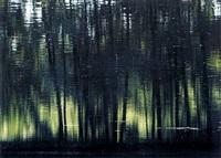 elfenweiher 1 by axel hütte
