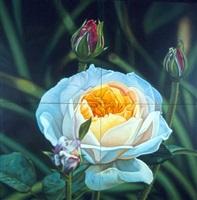 linda's english garden rose by tom blackwell
