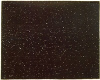 night sky by vija celmins